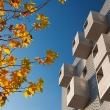 social-housing-madrid-3